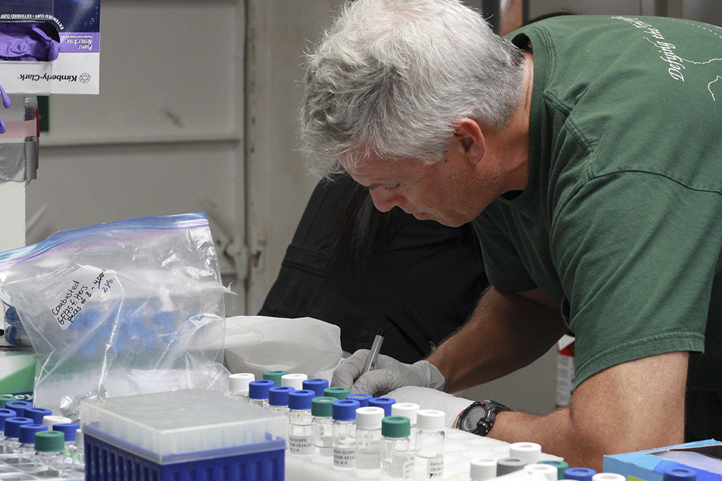 Scientists work in the lab aboard the Atlantic Explorer